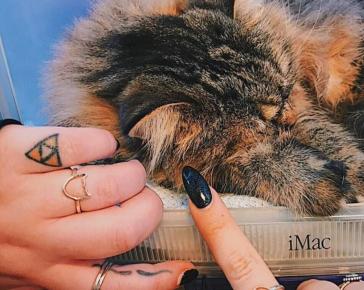 Bad Cat Ring